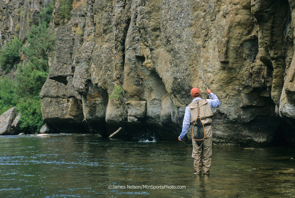 A fly fisherman sets the hook on a trout along a cliff in the Teton River Canyon of southeast Idaho.