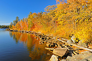 Autumn on shore of Lake of the Woods<br /> Nestor Falls<br /> Ontario<br /> Canada