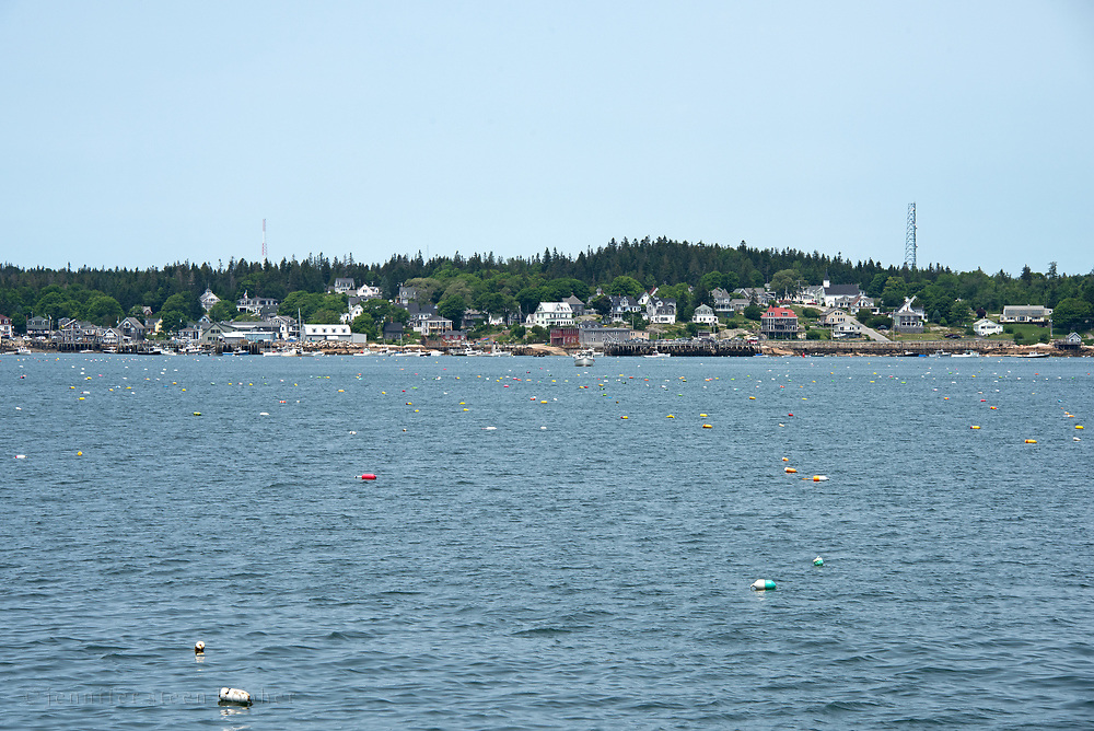 Lobster buoys are thick in the harbor of Stonington, Maine.