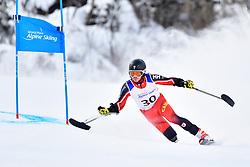 Downhill, LUSCOMBE Braydon, LW2, CAN at the WPAS_2019 Alpine Skiing World Championships, Kranjska Gora, Slovenia