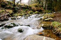 Upper Lake area near Glendalough, Ireland