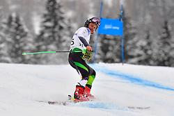 Downhill, GOURLEY Mitchell, LW6/8-2, AUS at the WPAS_2019 Alpine Skiing World Championships, Kranjska Gora, Slovenia