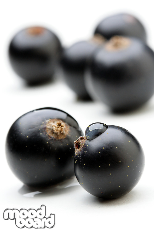 Black currants - close up