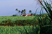 Church, Sugar Cane, Kauai, Hawaii