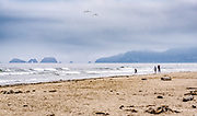 Looking north to Oceanside from Cape Lookout near Netarts, Oregon