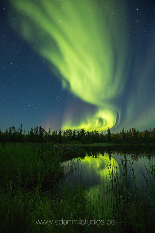 Contest Key Photo! Congratulations, you've found it! Send me an email at adamhillstudios@gmail.com with the title 'A Spark of Aurora on the Horizon' to be entered into the contest.