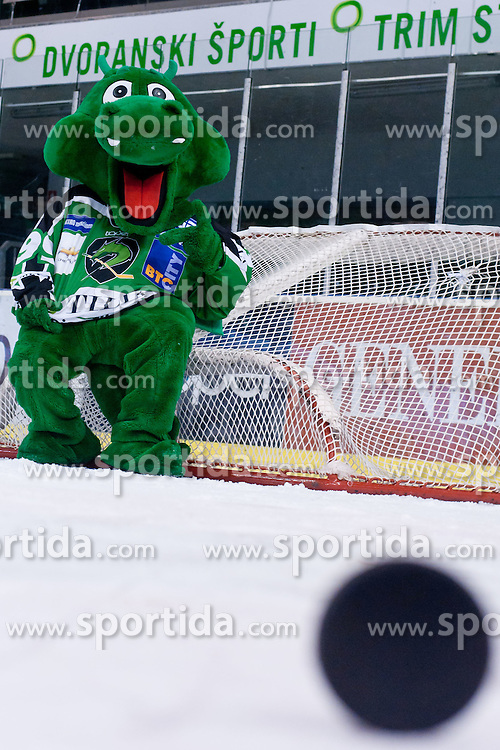 Official mascot dragon Hoki during ice-hockey match between HDD Tilia Olimpija and UPC Vienna Capitals in 31st Round of EBEL league, on December 11, 2011 at Hala Tivoli, Ljubljana, Slovenia. HDD Tilia Olimpija defeated UPC Vienna Capitals 4:0. (Photo By Matic Klansek Velej / Sportida)