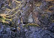 Graffiti of the dam builders: High Mountain Sheep (dam) Pacific Northwest Power