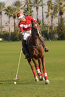 Polo Player leaning down from polo pony Advancing Ball on polo field during match