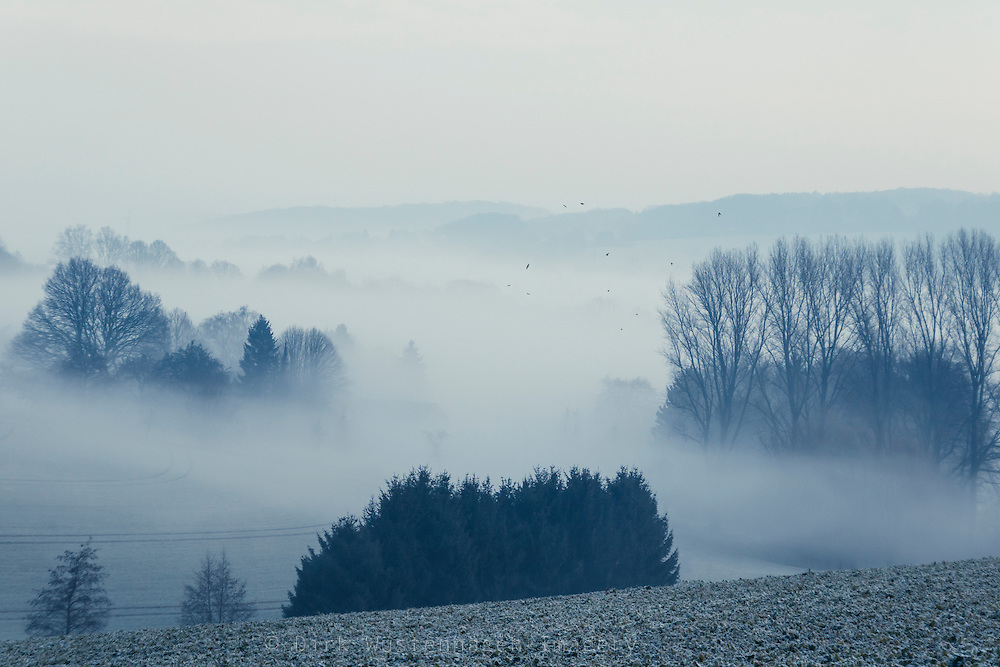Dense morning fog in a rural area.<br /> Society6 Prints &amp; more: https://society6.com/product/white-cover_print#1=45<br /> REDBUBBLE prints: http://www.redbubble.com/people/dyrkwyst/works/21705307-white-cover?ref=recent-owner