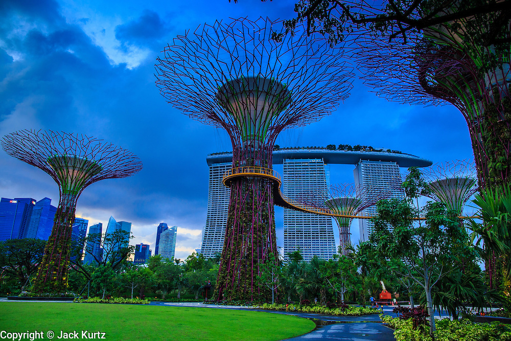 "21 DECEMBER 2012 - SINGAPORE, SINGAPORE:   The skyline of the Supertree Grove behind the ""supertrees"" in Gardens by the Bay in Singapore. Gardens by the Bay is a 250 acre park of reclaimed land in central Singapore. It is adjacent to the Marina Reservoir. The park consists of three waterfront gardens: Bay South Garden, Bay East Garden and Bay Central Garden.     PHOTO BY JACK KURTZ"