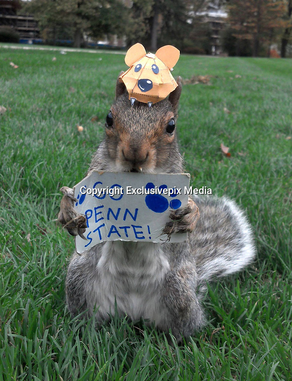 Squirrel whispering Penn State student turns her pet Sneezy into viral internet celebrity by coaxing the wild critter into dressing up for photo shoots<br /> <br /> A Penn State student is gaining an Internet reputation as a 'squirrel whisperer' thanks to her amazing ability to get a wild campus squirrel named Sneezy to pose in hilarious photos.<br /> Mary Krupa routinely dresses up the Eastern gray squirrel in hats and with props like pencils or tea cups to create scenes both adorable and little otherworldy--all for just peanuts.<br /> Sneezy happily strikes poses for the crunchy treats and her tameness, along with Krupa's uncanny persuasion skills, have turned the costumed critter into a kind of unofficial internet school mascot.<br /> <br /> <br /> Krupa's method is simple. She offers Sneezy a peanut and, while the squirrel nibbles, she puts a hat on her.<br /> <br /> To get Sneezy to hold props, like the tea cup she used in an English tea party-themed shoot, she simply smears a little peanut butter on whatever she wants the squirrel to hold.<br /> <br /> As easy as it sounds, Krupa makes clear that Sneezy is in control.<br /> 'I can never force her to do anything she doesn't want to do,'  'I mean, if she gets tired she'll just go up the tree.'<br /> Krupa discovered the friendliness of the campus squirrels when she was a freshman. She's now a junior and has befriended multiple squirrels.<br /> However, Sneezy--who got her name from her frequent adorable sneezes--likes Krupa the most, and the feeling is mutual.<br /> While other squirrels have let Krupa put hats on them, Sneezy is always the most willing.<br /> 'As long as she has food she is completely relaxed and really comfortable with people. She is just the sweetest, laid back squirrel ever,' Krupa said.  <br /> ©Exclusivepix Media