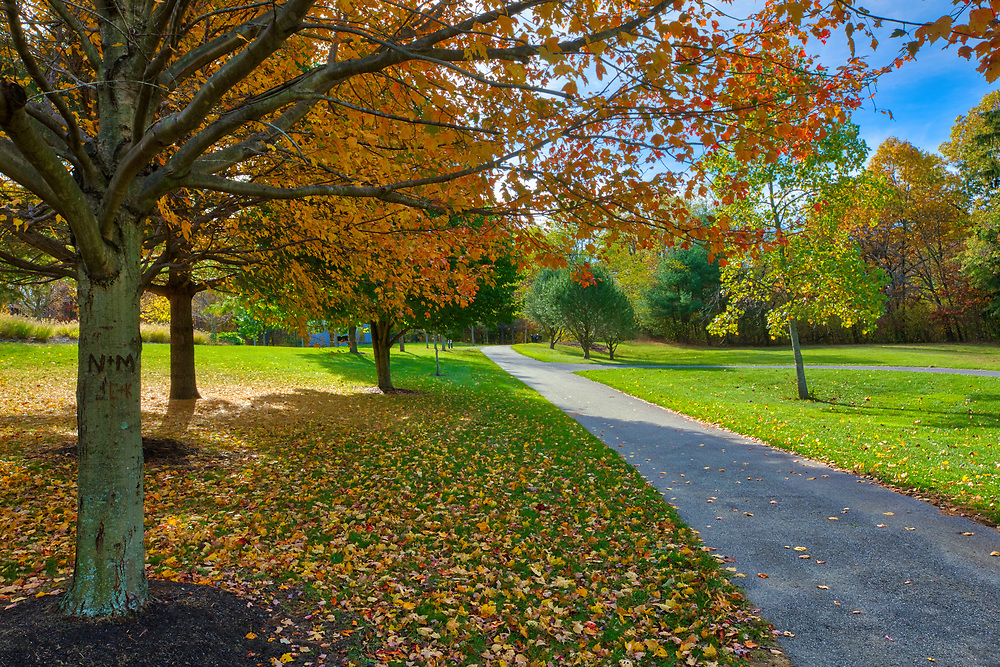 New England walk in the park at Green Hill Park in Worcester, MA featuring fall colors on a beautiful October picture perfect fall day. Autumn foliage showing their stunning display along a path leading the way. The urban greenspace provides local recreation and is located atop one of Worcester's seven main hills. The public park is home to the Massachusetts Vietnam Veterans' Memorial. <br />