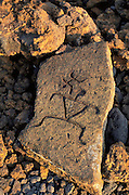 Petroglyphs, Puako, Kohala Coast, Island of Hawaii, Hawaii, USA<br />