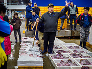 09 OCTOBER 2018 - SEOUL, SOUTH KOREA: A bid spotter holds up the fish being bid on during the fish auction in the Noryangjin Fish Market. The auctions start about 01.00 AM and last until 05.00 AM. Noryangjin Fish Market is the largest fish market in Seoul and has been in operation since 1927. It opened in the current location in 1971 and was renovated in 2015. The market serves both retail and wholesale customers and has become a tourist attraction in recent years.           PHOTO BY JACK KURTZ