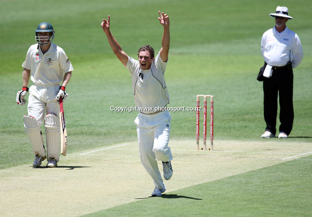New Zealand bowler Tim Southee celebrates the wicket of Matthew Hayden during day 1 of the first test match between Australia and New Zealand at the Gabba. Brisbane, Australia. Friday 20 November 2008. Pic: Andrew Cornaga/PHOTOSPORT