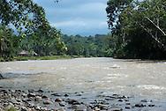 Ember&aacute;-Wounaan es una comarca ind&iacute;gena de Panam&aacute;. Fue creada en 1983 a partir de dos enclaves ubicados en la provincia de Dari&eacute;n, espec&iacute;ficamente de los distritos de Chepigana y Pinogana. <br /> <br /> Su capital es Uni&oacute;n Choc&oacute;. Su extensi&oacute;n abarca 4383,5 km&sup2; y posee una poblaci&oacute;n de 9.544 habitantes (2010), la mayor&iacute;a de &eacute;stos pertenecen a las etnias ember&aacute; y wounaan, distribuidas en 40 comunidades.<br /> <br /> Los ember&aacute;s hablan el ember&aacute; y los wounaan el Wounaan meu. Ember&aacute; significa &quot;hombre bueno&quot; o &quot;buen amigo&quot;. En wounaan meu significa &quot; gente, personas o pueblo.<br /> <br /> Su vivienda La construyen sobre pilares (palafitas), para protegerlos de las inundaciones de los r&iacute;os(son muy resistentes). <br /> <br /> El techo es c&oacute;nico, se fabrica utilizando las hojas de la planta conocida como guagara, aunque tambi&eacute;n utilizan las hojas de la Palma Real, pero utilizan tambi&eacute;n otros estilos.<br /> Su actividad econ&oacute;mica es la agricultura es la principal actividad. Cultivan sobre todo pl&aacute;tano, producto con el cual comercian; siembran ma&iacute;z, arroz, tub&eacute;rculos, como &ntilde;ame, yuca y otros. <br /> <br /> Otras ocupaciones son: la pesca, la caza, la cr&iacute;a de animales de corral, y la recolecci&oacute;n de plantas. Recogen todo lo que se produce desde la tierra. Les gusta la arquitectura.<br /> <br /> &copy;Alejandro Balaguer/Fundaci&oacute;n Albatros Media.