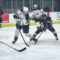 5th year forward, Emma Waldenberger (9) of the Regina Cougars during the Women's Hockey Home Game on Sat Oct 20 at The Co-operators Arena. Credit: Arthur Ward/Arthur Images