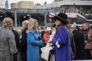 AMANDA BUSH; ( PURPLE) The Cheltenham Festival Ladies Day. Cheltenham Spa. 11 March 2015