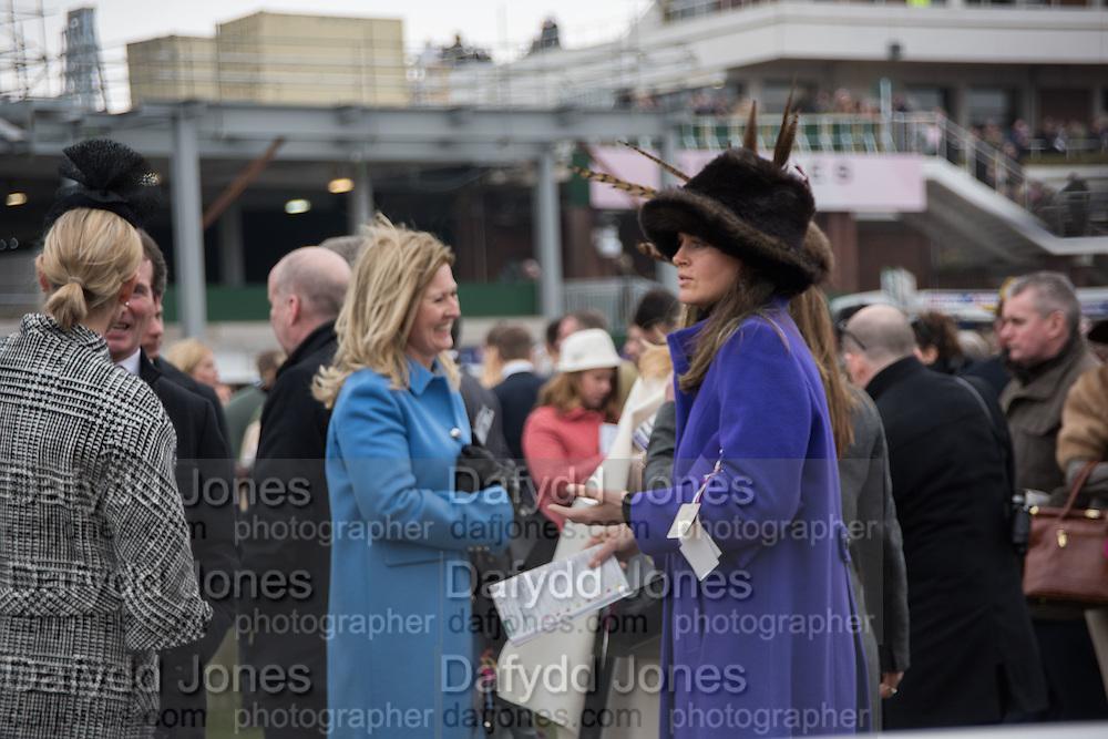 AMANDA BUSH; ( PURPLE) The Cheltenham Festival Ladies Day. Cheltenham Spa. 11 March 2015