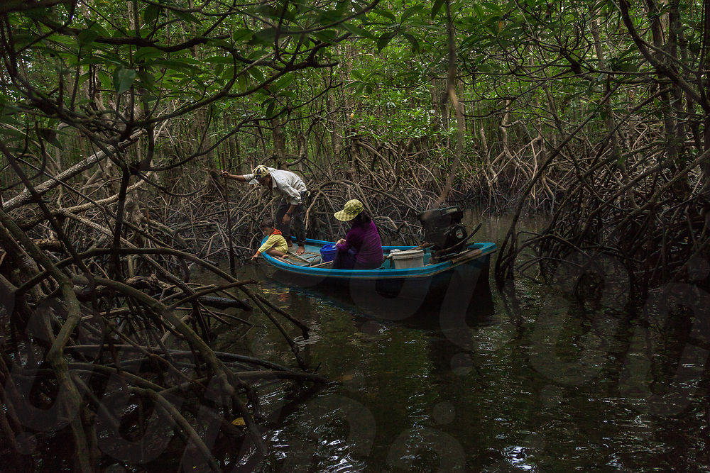 November 20, 2013 - Beung Kachhang village (Koh Kong). Mr. Lay Pich (31), her wife Hun Sophear  (32) and their children Hun sombath (4) go fishing in the mangrove forest that surrounds the village. Even if the community is located inside a natural protected area, Illegal sand dredging in the area have decimated a number of fish and crabs making more and more difficult to catch enough food for the local families. © Thomas Cristofoletti / Ruom