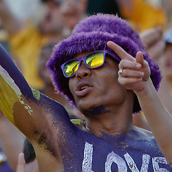 October 8, 2011; Baton Rouge, LA, USA;  LSU Tigers fans cheer from the stands during the fourth quarter of a game against the Florida Gators at Tiger Stadium. LSU defeated Florida 41-11. Mandatory Credit: Derick E. Hingle-US PRESSWIRE / © Derick E. Hingle 2011
