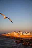 The walled old city of Essaouira, Morocco is bathed in late day light just before sunset. The city's medina has been named a UNESCO World Heritage site. The city lies on the Atlantic coast of Morocco in northern Africa. http://www.gettyimages.com/detail/photo/walled-city-of-essaouira-morocco-in-evening-light-royalty-free-image/182986696