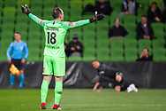 Melbourne City goalkeeper Eugene Galekovic (18) screaming at referees during the FFA Cup Round 16 soccer match between Melbourne City FC v Newcastle Jets at AAMI Park in Melbourne.