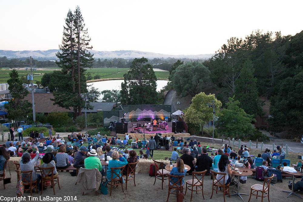 Mt. Eerie at Huichica Music Festival 2014 held at Gunlach Bundschu Winery in Sonoma, CA. Photo © Tim LaBarge 2014