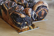 Freshly baked Chocolate and poppy seed yeast cake