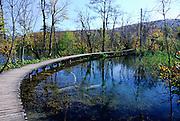 Curved, raised walkway over pool. Plitvice National Park, Croatia