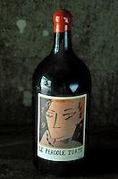 Italie - Toscane - Province de Florence - Region du Chianti - Cave à vin -