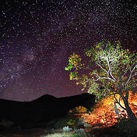 Milky Way, as seen from Sahyadri mountain ranges, western ghats, India.