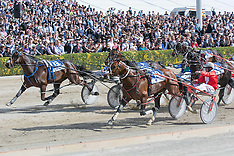 Christrchurch-Trotting, New Zealand Trotting Cup 2014