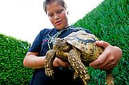 Reportage bij schildpaddenopvangcentrum SOPTOM. COPYRIGHT ROBIN UTRECHT FOTOGRAFIE