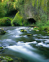 Eagle Creek, Columbia River Gorge National Scenic Area Oregon USA