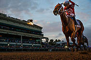 HALLANDALE BEACH, FL - JANUARY 27: Gun Runner wins the Pegasus World Cup Invitational at Gulfstream Park Race Track on January 27, 2018 in Hallandale Beach, Florida. (Photo by Alex Evers/Eclipse Sportswire/Getty Images)