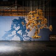 Yi Ting Wang -- Exhibit