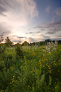Image along western crest of the Rouge River valley with clouds before sunset - Toronto .2592x3888 (original size)