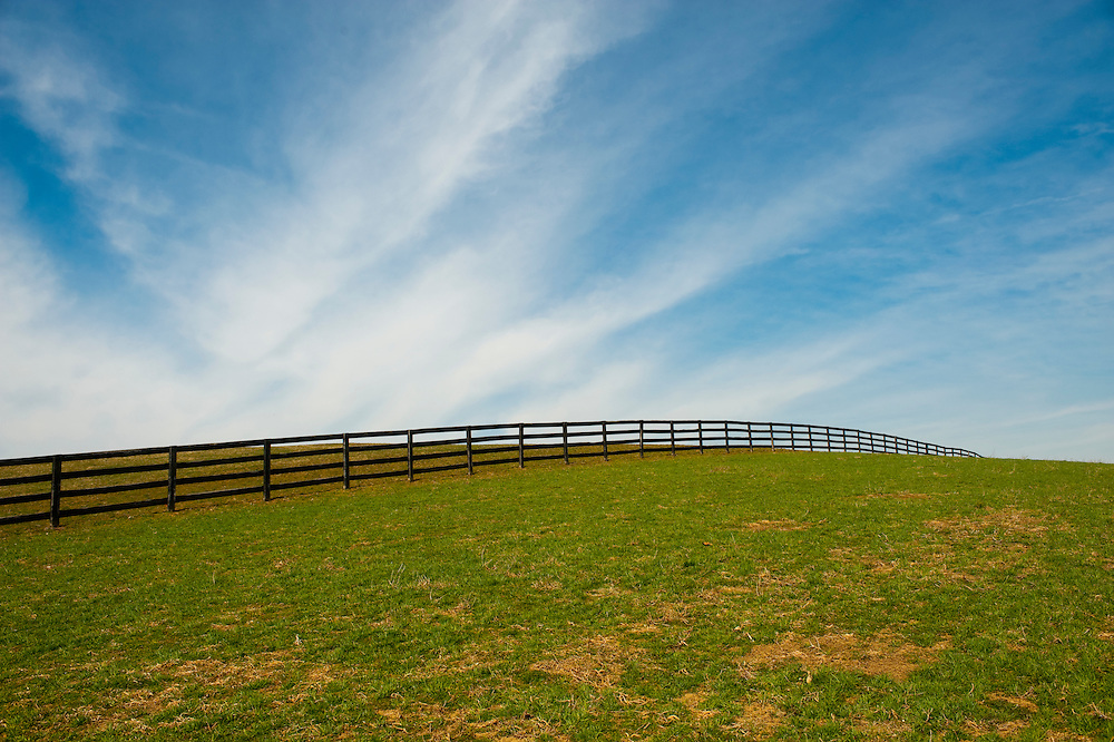 Horse pasture