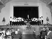 Vienna Boys Choir.   (P5)..1981..25.11.1981..11.25.1981..25th November 1981..The Vienna Boys Choir performed a concert at the Royal Dublin Showgrounds (RDS),Concert Hall,  Ballsbridge, Dublin, last night. A packed audience enjoyed the recital from the world renowned choir...The Vienna Boys Choir bow to the audience prior to beginning the recital.