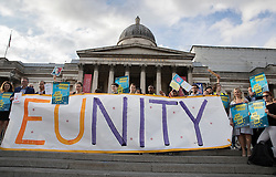 © Licensed to London News Pictures. 21/06/2016. London, UK. A banner call for EU unity is displayed at a Remain campaign event in Trafalgar Square organised via Facebook. There are only two full days of campaigning ahead of the UK EU referendum taking place on Thirsday 23rd June, 2016. Photo credit: Peter Macdiarmid/LNP