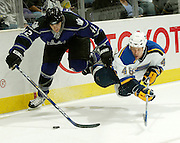 LOS ANGELES, CA - OCTOBER 29:   of the Los Angeles Kings during the game against the St. Louis Blues on October 28, 2005 at the Staples Center in Los Angeles, California.  (Photo by Jeffrey Bottari/Getty Images)
