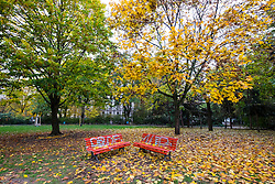 Park during autumn at Kollwitzplatz in Prenzlauer Berg in Berlin Germany