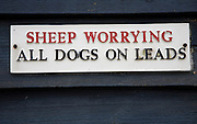 Sign Sheep Worrying all dogs on leads