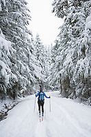 Female cross country skier on snowy road in Mt Baker Snoqualmie National Forest Washington USA.