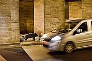 Senza fissa dimora dormono sui marciapiedi che dividono la strada del tunnel tra via Marsala e Via Giolitti vicino alla Stazione Termini.<br /> Homeless sleep on the sidewalks that divide the road tunnel between Via Marsala and Via Giolitti near Termini Station