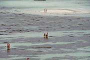Ko Lipe, Thailand. Pattaya beach during the lowest tide.