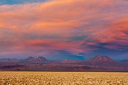 Salt Crust, Salar de Atacama, Atacama Desert, Chile.