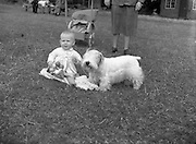 """04/08/1952 <br /> 08/04/1952<br /> 04 August 1952  <br /> Dog Show, 18th Annual Green Star Championship at Monkstown, Co. Dublin. Baby Elenor  Crummie, The Square, Rathfriland, Co. Down with Miss E. Crummies """"Grey Buttons"""" B. Breed and Green Star winner"""